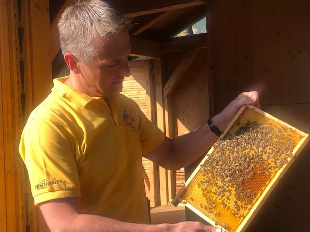 Lehrausgang zum Bienenzentrum